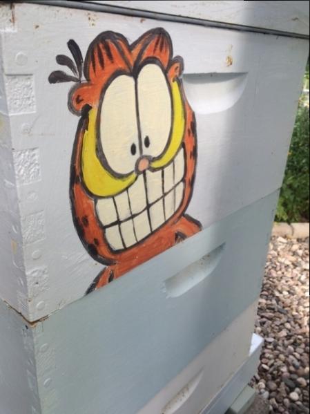 Mansing_Garfield